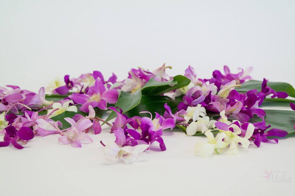 Hawaiian flowers - loose orchid blooms