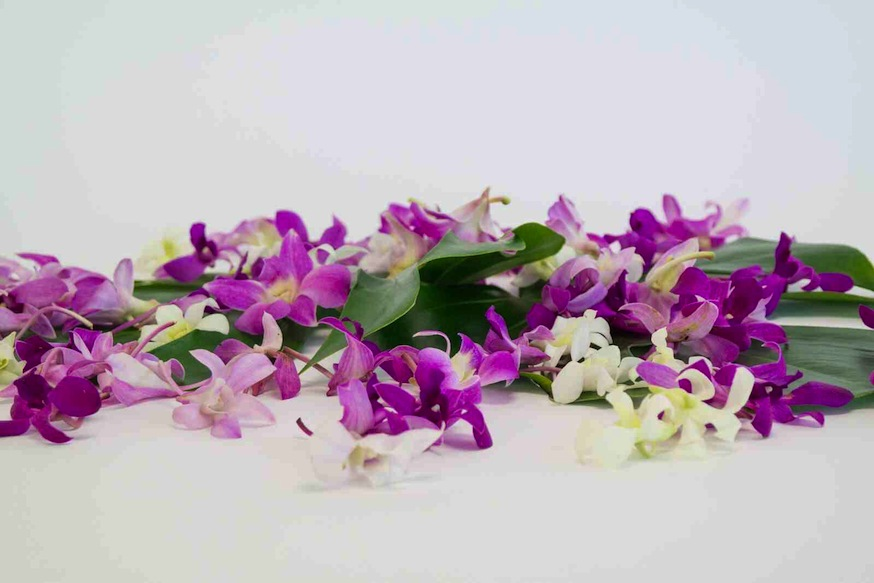 Alii Flowers - Hawaiian Flowers | Fresh Leis | Gift Baskets