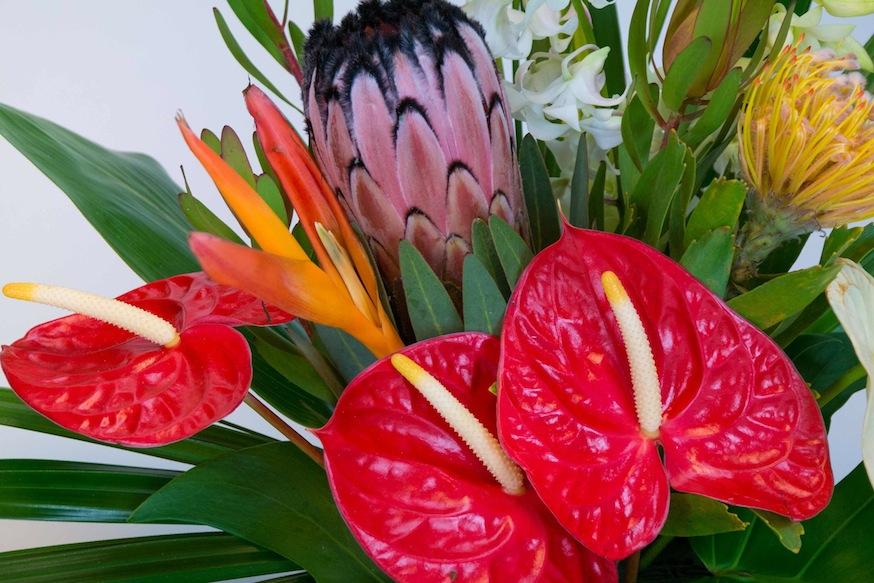 Alii Hawaiian Tropical Flowers assortment