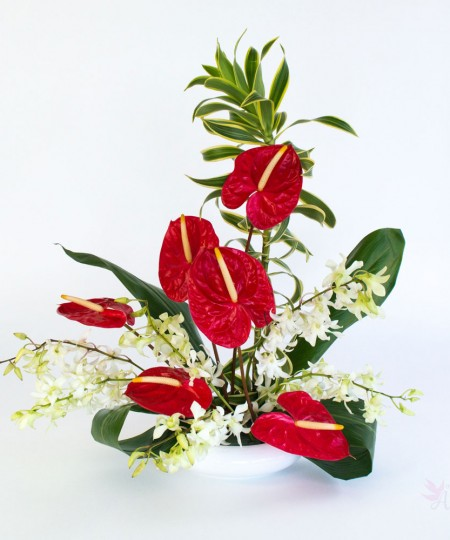 hawaiian.valentine flowers