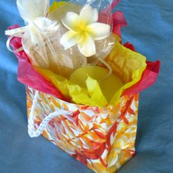 hawaiian.gift.bag.plumeria