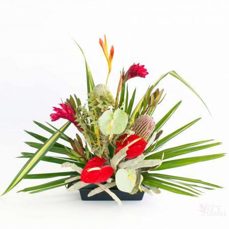 Hawaiian.christmas.flower