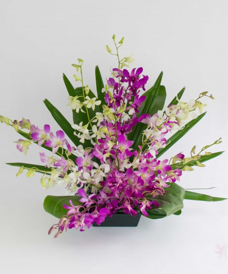 Hawaiian.orchid.arrangement