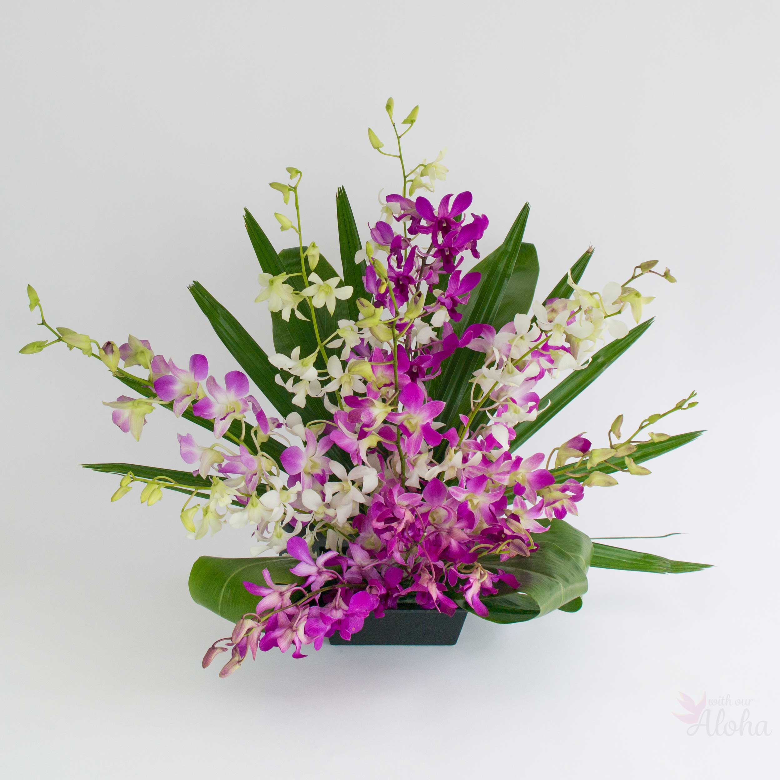 Okika Orchids Hawaiian Flower Assortments