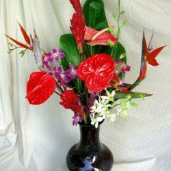 tropical.flower.mix