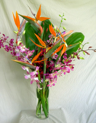 bird of paradise flower with orchids