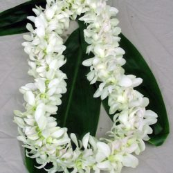 Hawaiian Leis and Corsages