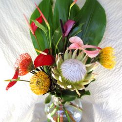 royal.protea.mix
