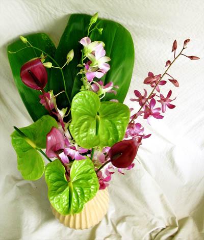 purple and green Hawaiian flowers