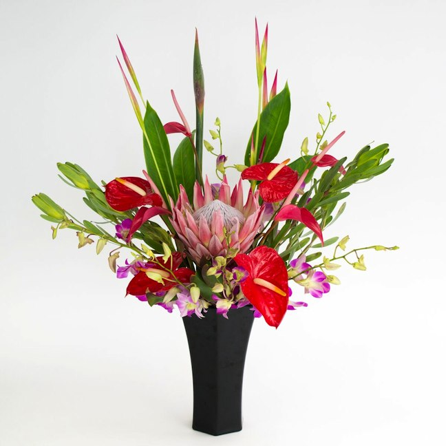 Tropical flowers with king protea in black vase