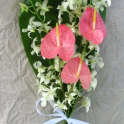 Anthurium and Orchid Bridal Bouquets