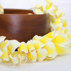 Hawaiian plumeria leis fresh