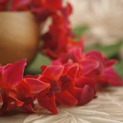 color orchid leis red