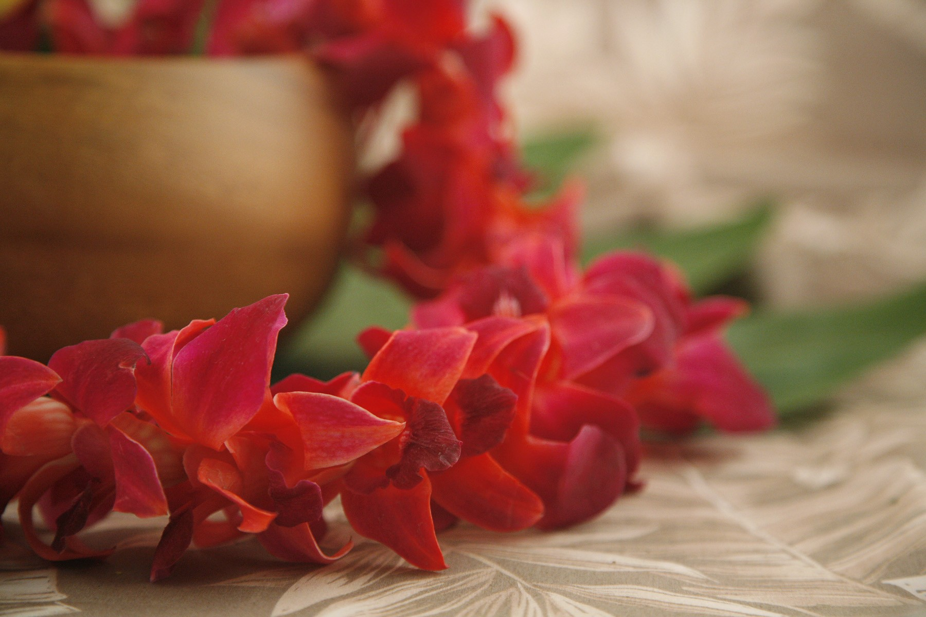 Infused color orchid leis from hawaii back izmirmasajfo Images