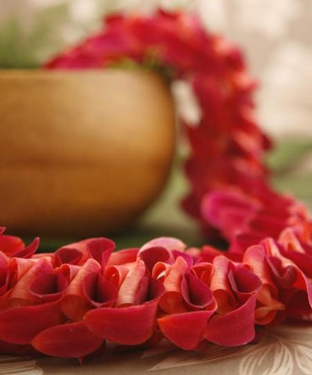 Hawaiian Lei Anuenue Red