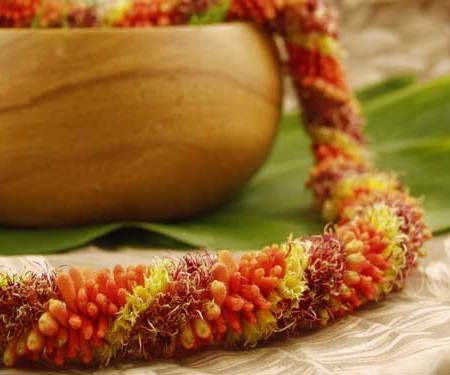 Cigar Lei red and yellow